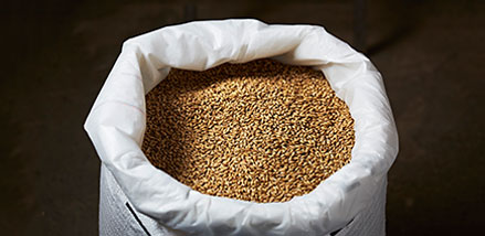 Inquiry for special grains, bio grains, whole grains, organi, healthy